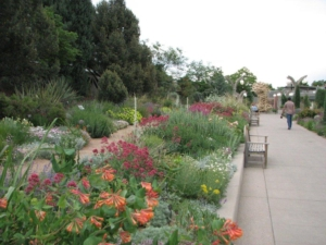 Waterwise strip of plantings at the Denver Botanic Gardens.