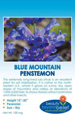 Tag for Blue Mountain Penstemon packet