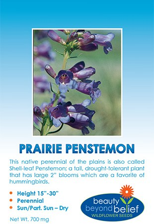 Photo of the Prairie Penstemon seed packet.