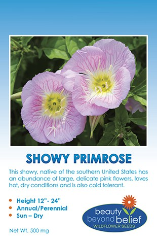 Showy Primrose tag with two pink poppy-like flowers