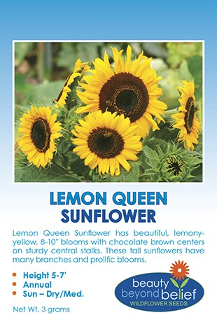 Tag for Lemon Queen Sunflower packet with pale yellow petals and a dark center