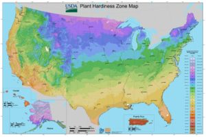 USDA Hardiness Zone Map of the united states
