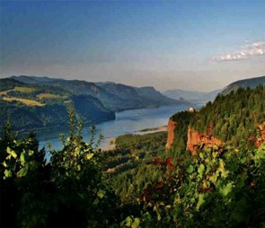 The Columbia River Gorge with green cliffs for the 'Northwest' catagory selection.