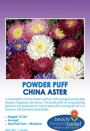 Powder Puff China Aster package front.