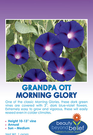 Tag for the Grandpa Ott's Morning Glory seed packet.