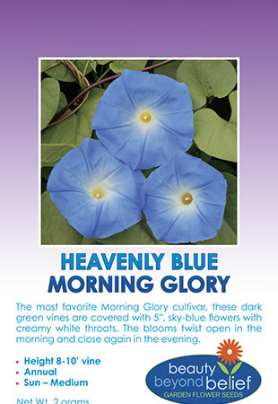 Tag for the Heavenly Blue Morning Glory seed packet.