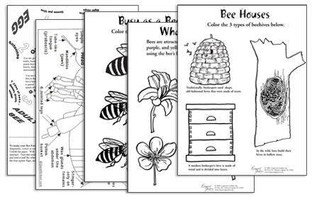 Picture of 5 different kids pollinator activity work sheets.
