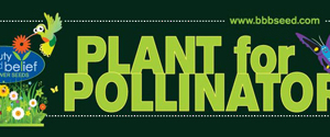 Plant For Pollinators Sticker