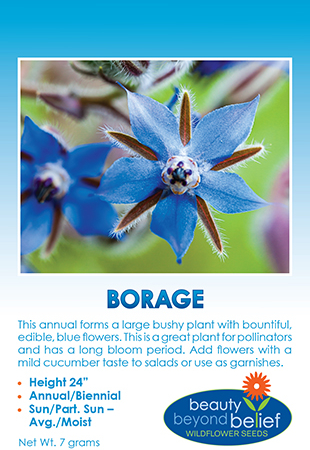 Photo of Borage wildflower packet.