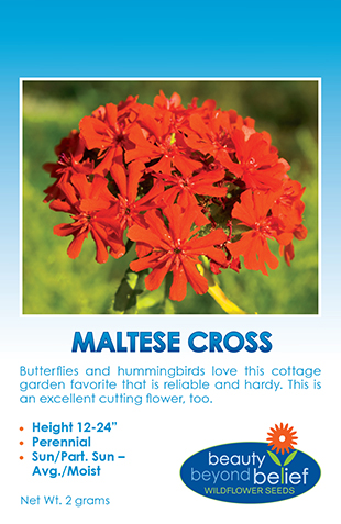 Photo of Maltese Cross wildflower packet