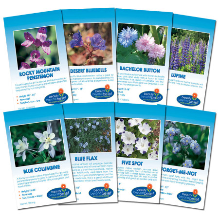 Blue Blazes Flower Seed Collection