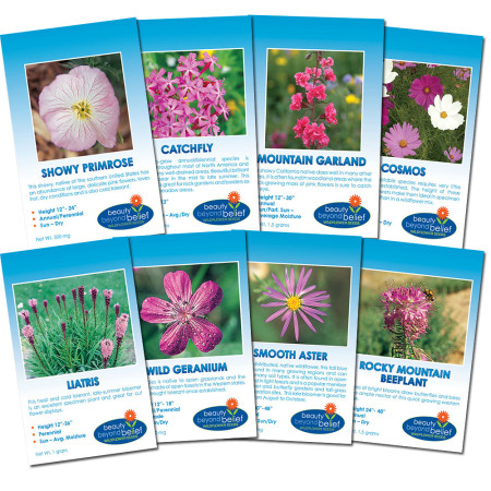 Pink Blush Flower Collection of 8 flower packets.