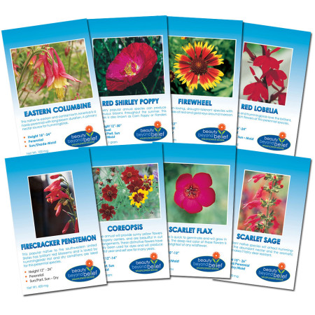 Crimson Flame Flower Collection of 8 flower packets.