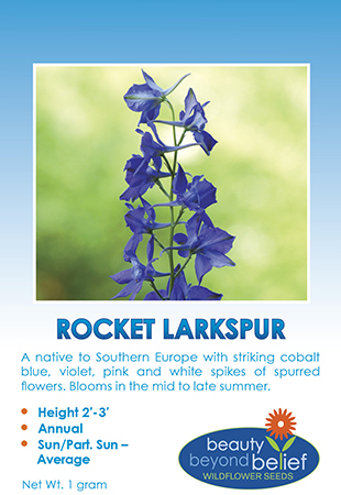 Rocket Larkspur tag with tall spike of blue spurred flowers
