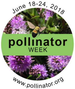 Logo for pollinator week from pollinator.org.
